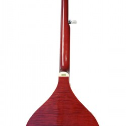 BanjolaPlus: Wood body Banjo with Pickup and Bag