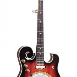 EBM-5: Electric Banjo