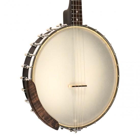 IT-17: Irish Tenor Banjo with 17 Frets and Gig Bag