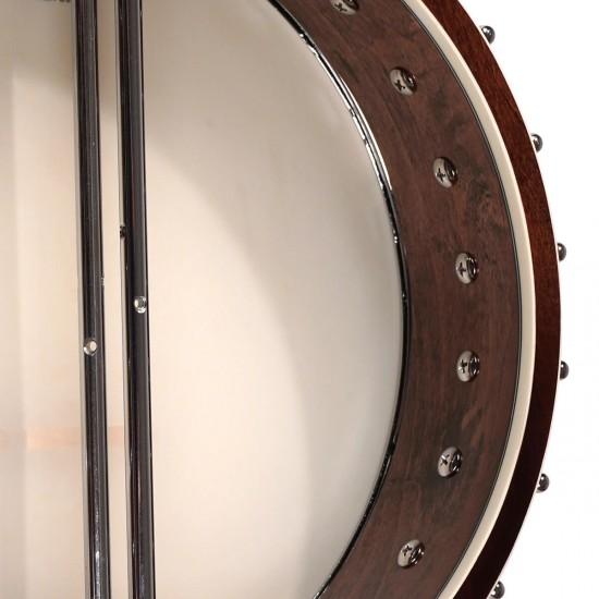 IT-250: Irish Tenor Banjo with Case