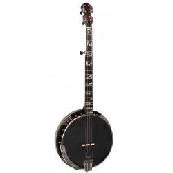 Mastertone ML-1: Missing Link Bela Fleck Baritone Banjo with Case