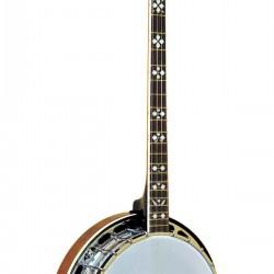 PS-250: Plectrum Special Banjo
