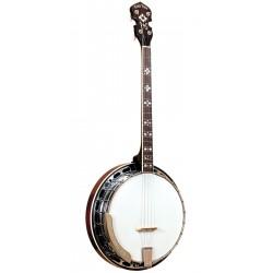 TS-250: Tenor Special Banjo with Case