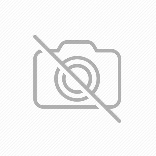 OB-150: Orange Blossom Banjo with Case